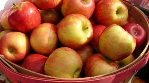 website apples