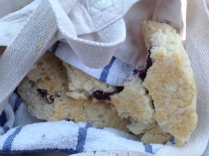 website scones