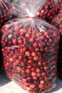 bags-of-cranberries